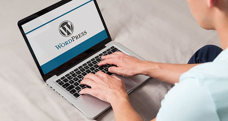 Insert PDF into WordPress » The solution is so easy [➜ Tutorial]
